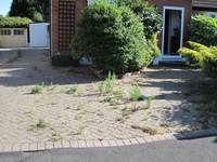 Driveway Cleaning Crewe and Congleton image